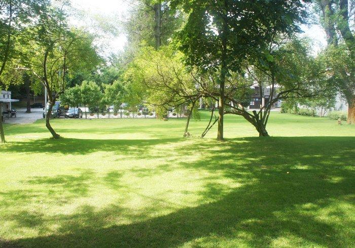 teren zielony klub deski